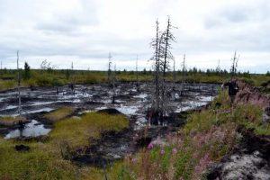 Сергей Иванов призвал к ужесточению в РФ ответственности за нефтеразливы в тундре