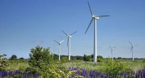 Деньги на ветер: «Ветроэнергетикой» будет построено 3 ветропарка в Ростовской области