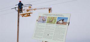 МОЭСК установит в этом году на опорах, прилегающих к заказнику «Журавлиная родина», 1000 птицезащитных устройств