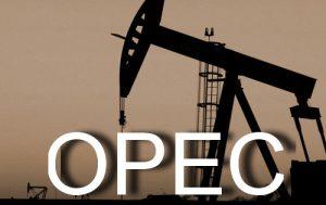 В Саудовской Аравии изучаются возможные эффекты от распада OPEC