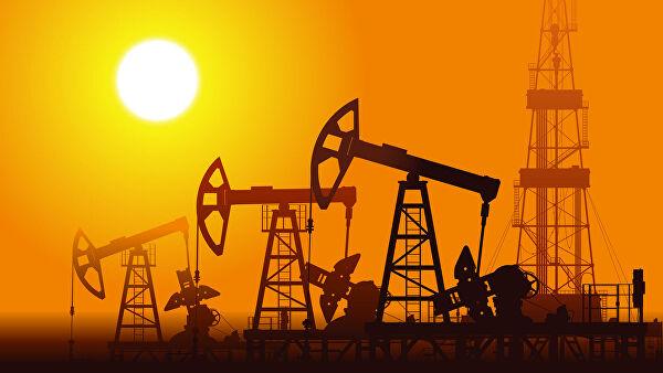 IEA и OPEC: В этом году развивающиеся страны потеряют от половины до 85% нефтегазовых доходов